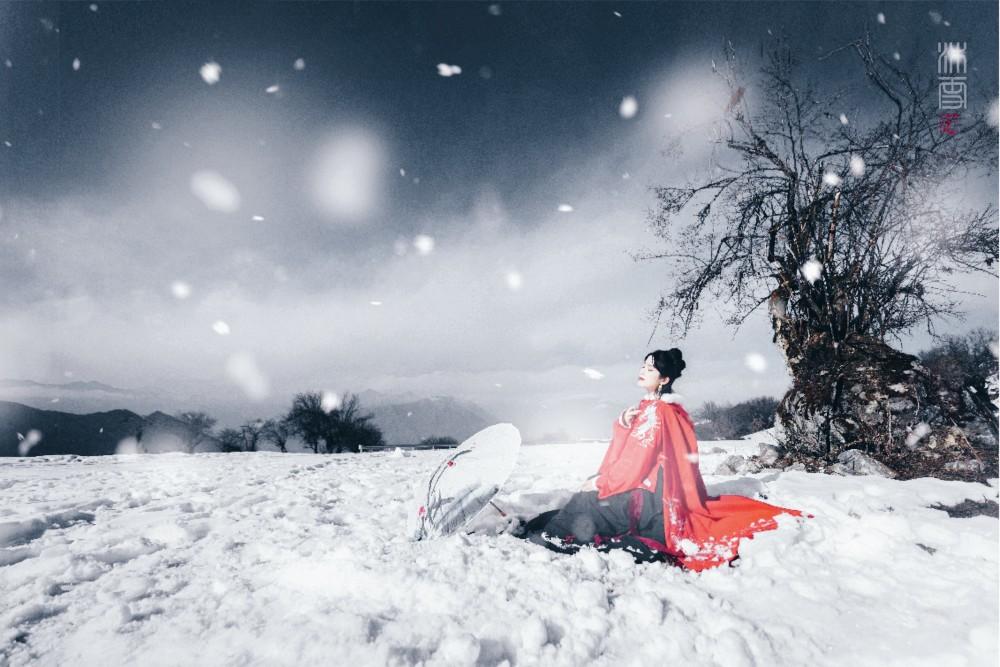 雪花像绽放的礼花_初雪
